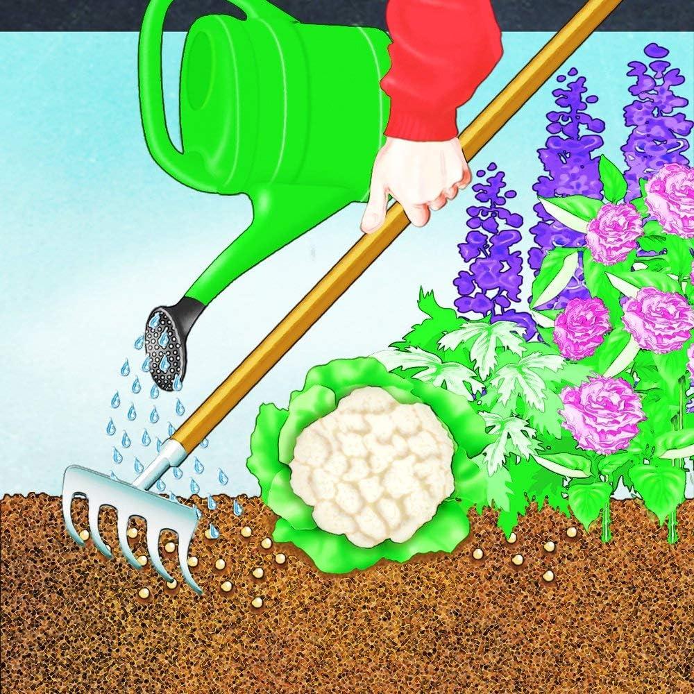 Colore Miniature Mondo Garden Tools Decorazioni a Forma di Foglia Confezione da 2 Marrone