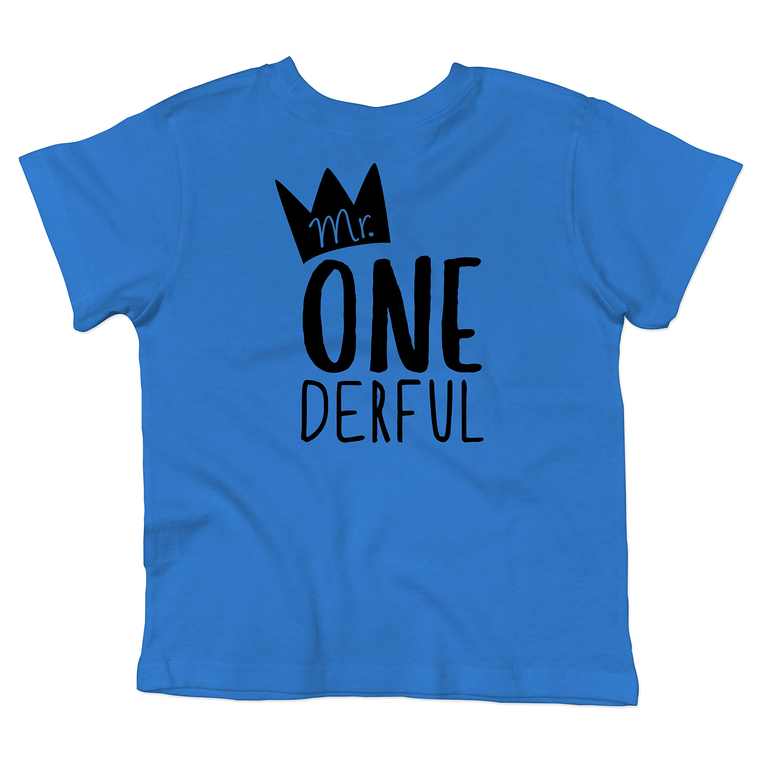 Olive Loves Apple Boys 1st Birthday Outfit Mr One-Derful Tee Shirt for Boys 1st Birthday Shirt Short Sleeve Blue Top,18 Months by Olive Loves Apple