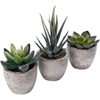 Artificial Succulents Plants Fake Greenery Miniature Simulation Potted Plants Assorted Pot Safe for Office Home Desk