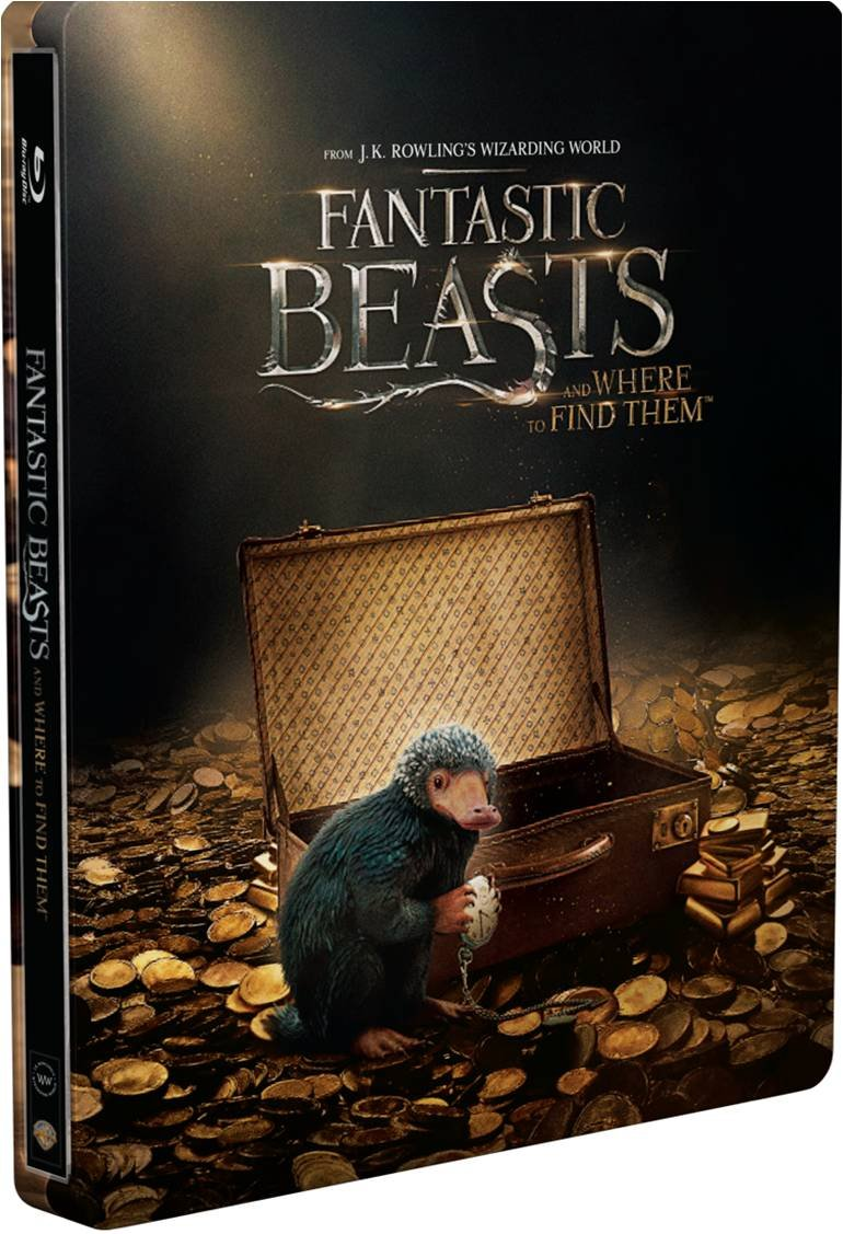 Amazon.com: Fantastic Beasts and Where to Find Them (Limited Edition ...