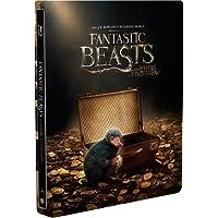 Animales Fantásticos y Dónde Encontrarlos (BD + DVD Steelbook) [Blu-ray]