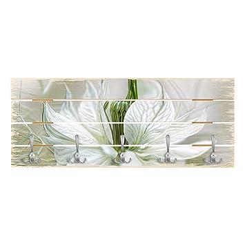 Bilderwelten Perchero de Madera - White Nigella - Ganchos ...