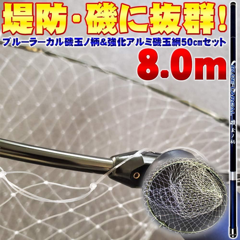 磯玉2点セット 青LARCAL 磯玉の柄800 & 網付き 50cm強化アルミ四つ折り枠 (sip-netset15-iso)