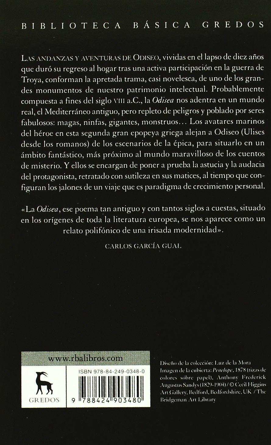 Odisea / Odyssey (Spanish Edition): HOMERO: 9788424903480: Amazon.com: Books