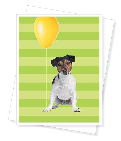 Amazon Birthday Jack Russell Terrier Birthday Greeting Card