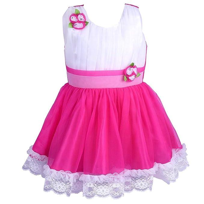 4b31835145f7 Wish Karo Girls Net Party Wear Frock Dress - (fr1010pnw 5-6 ...