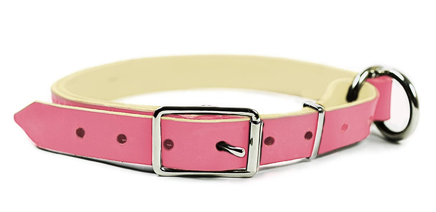 Dean & Tyler  Strictly Business 2-in-1 Dog Choke Collar with Solid Nickel Hardware, 30-Inch by 1-Inch, Fits Neck 28-Inch to 32-Inch, Pink
