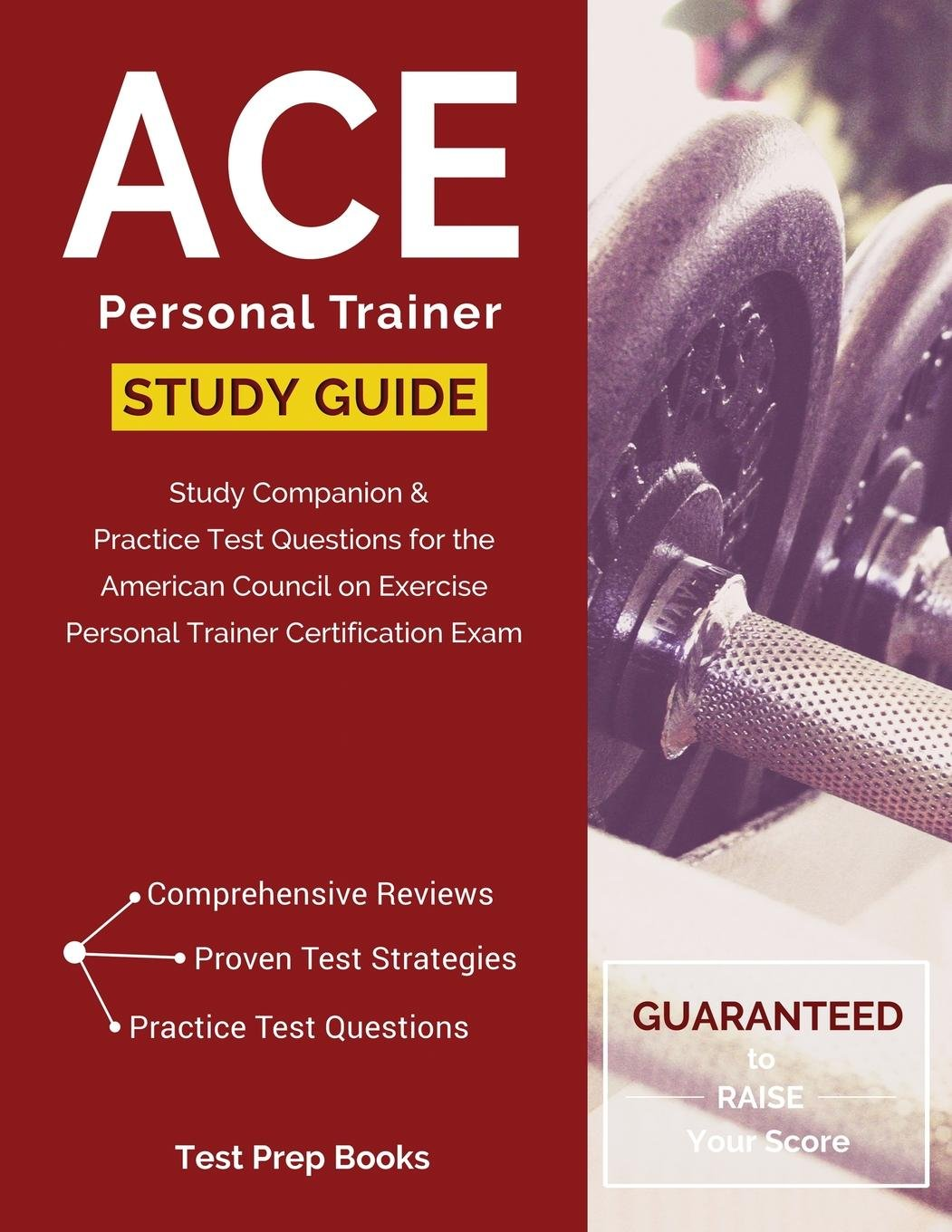 Buy Ace Personal Trainer Manual Study Guide Study Companion