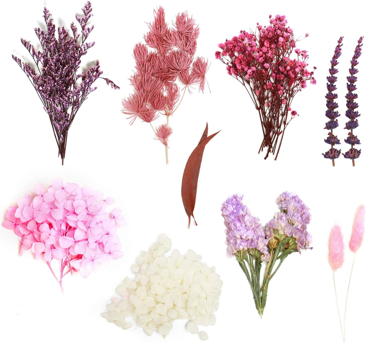 Resin Jewelry Crafts and DIY Candle Blue Natural Dried Flower for Scrapbooking Nolliere 35 Pcs Real Dried Pressed Flowers for Resin