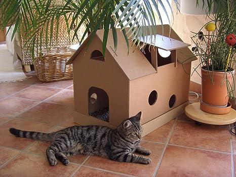 Gato de Casa (cartón con mäusehäus Chen – Gato Cesta, gato cueva: Amazon.es: Productos para mascotas