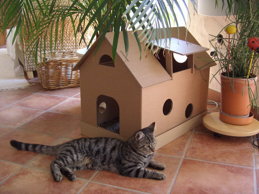 Connu Niche en carton pour chat: Amazon.fr: Animalerie TD23