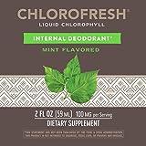 Nature's Way Chlorofresh Chlorophyll Drops 40X