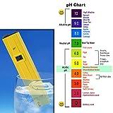 HDE Grower's Toolbox- Digital pH Meter and TDS