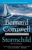 Stormchild: A Novel of Suspense