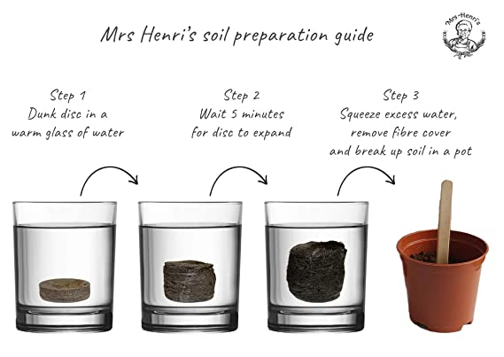 Bonsai - Mrs Henris Plant Growing Kit. Cultive 5 Bonsáis increíbles Desde Sus Semillas traer la Naturaleza a casa o a su Oficina.