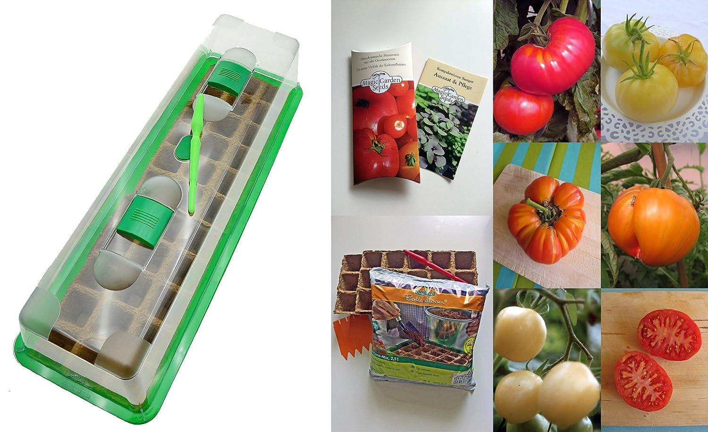 Tomaten-Anzucht-Set (unbeheizt): 'Alte, aromatische Tomatensorten', 5 besondere Tomatensamen-Sorten mit Minigewächshaus & Aussaatzubehör Magic Garden Seeds