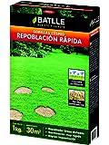 Semillas Batlle - Césped Repoblación Rápida, 1 kg