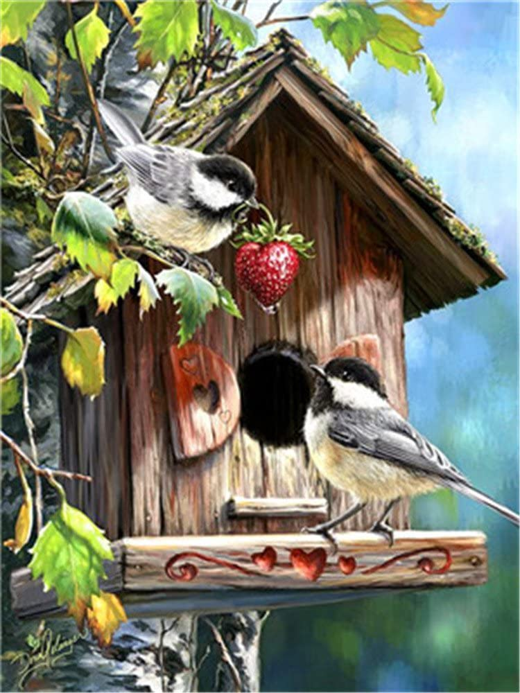 Paint by Numbers Kit DIY Oil Painting Kit for Kids and Adults Framed Birds 16x20