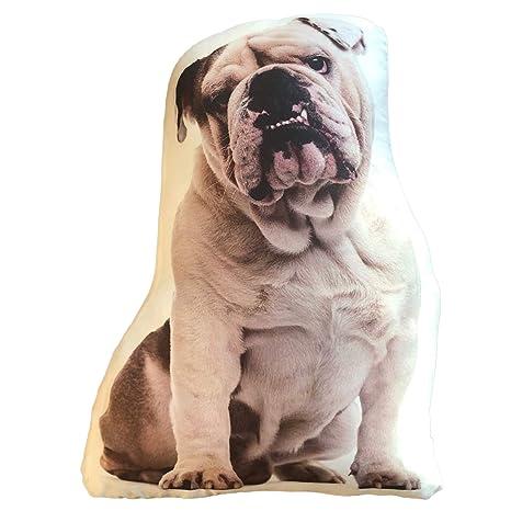 Amazon.com: Ella Sussman Bulldog - Cojín para perro: Home ...