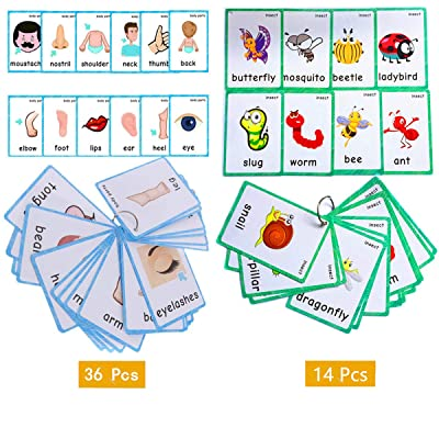 Set of(Body Parts+Insects) Flash Cards for Toddlers | Kids Learning Montessori Pocket Cards Toys | Perfect for Pre-K Decorations Background Wall Stickers, Teacher/Autism Therapists Tools : Office Products