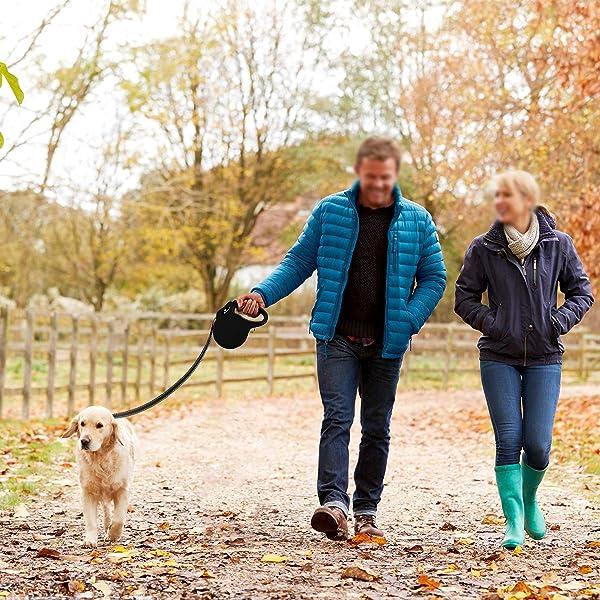 Rollleine-für-Hunde