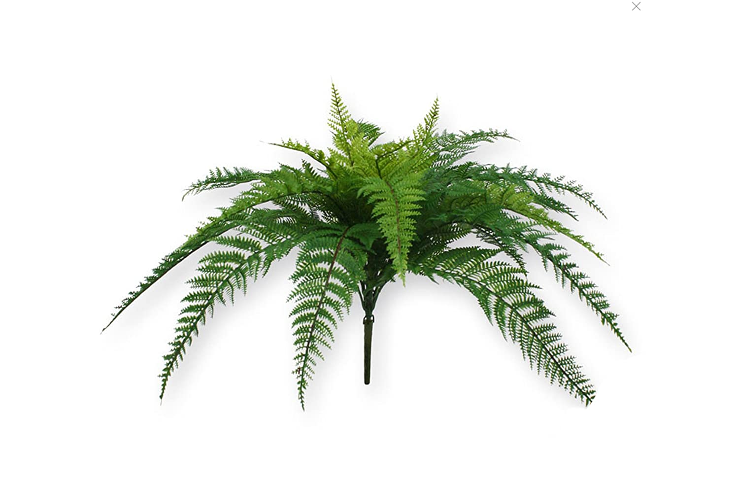 Kelly Hoppen London Fern