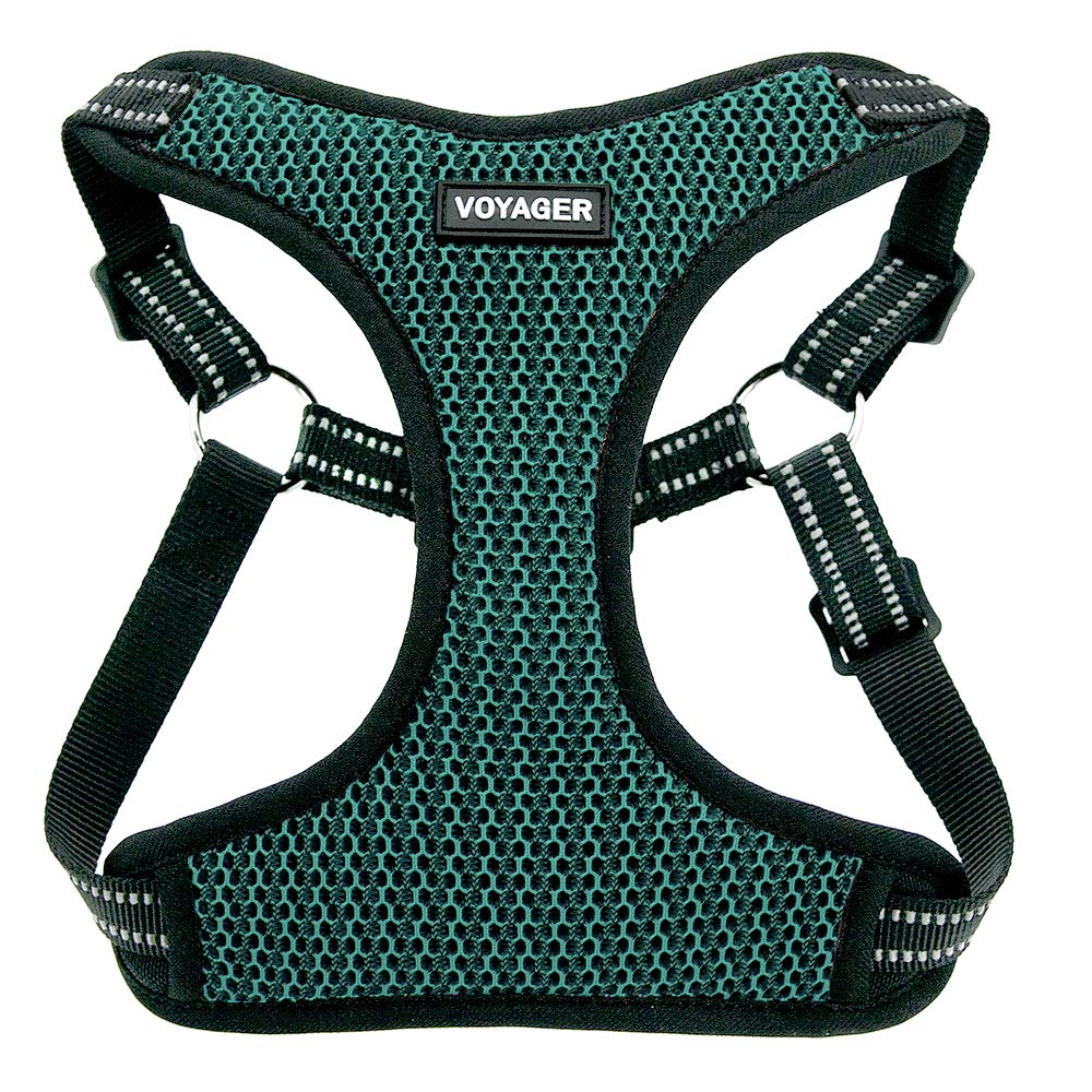 Turquoise Base Small Turquoise Base Small Voyager by Best Pet Supplies Fully Adjustable Step-in Mesh Harness with Reflective 3M Piping (Turquoise Base, Small)