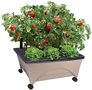 Emsco Group City Picker Raised Bed Grow Box – Self Watering and Improved Aeration – Mobile Unit with Casters - Sand