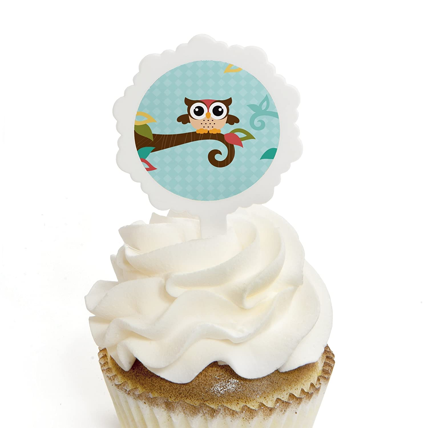 Amazon Owl Cupcake Picks with Stickers Baby Shower or