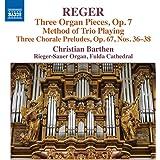 Reger: Orgelwerke Vol. 16