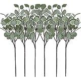 Artificial Greenery Stems 6 Pcs Straight Silver Dollar Eucalyptus Leaf Silk Greenery Bushes Plastic Plants Floral…