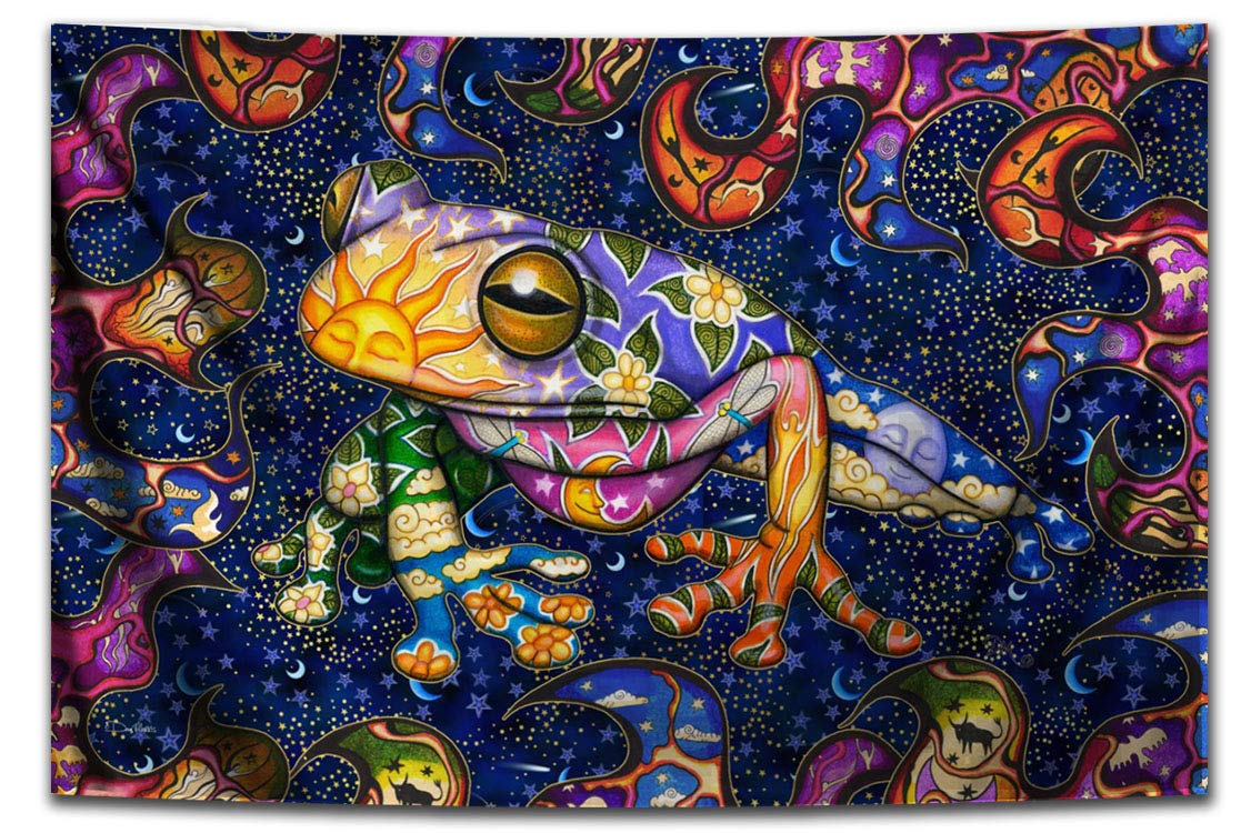 Peace Frog Tapestry by Dan Morris, 26 x40