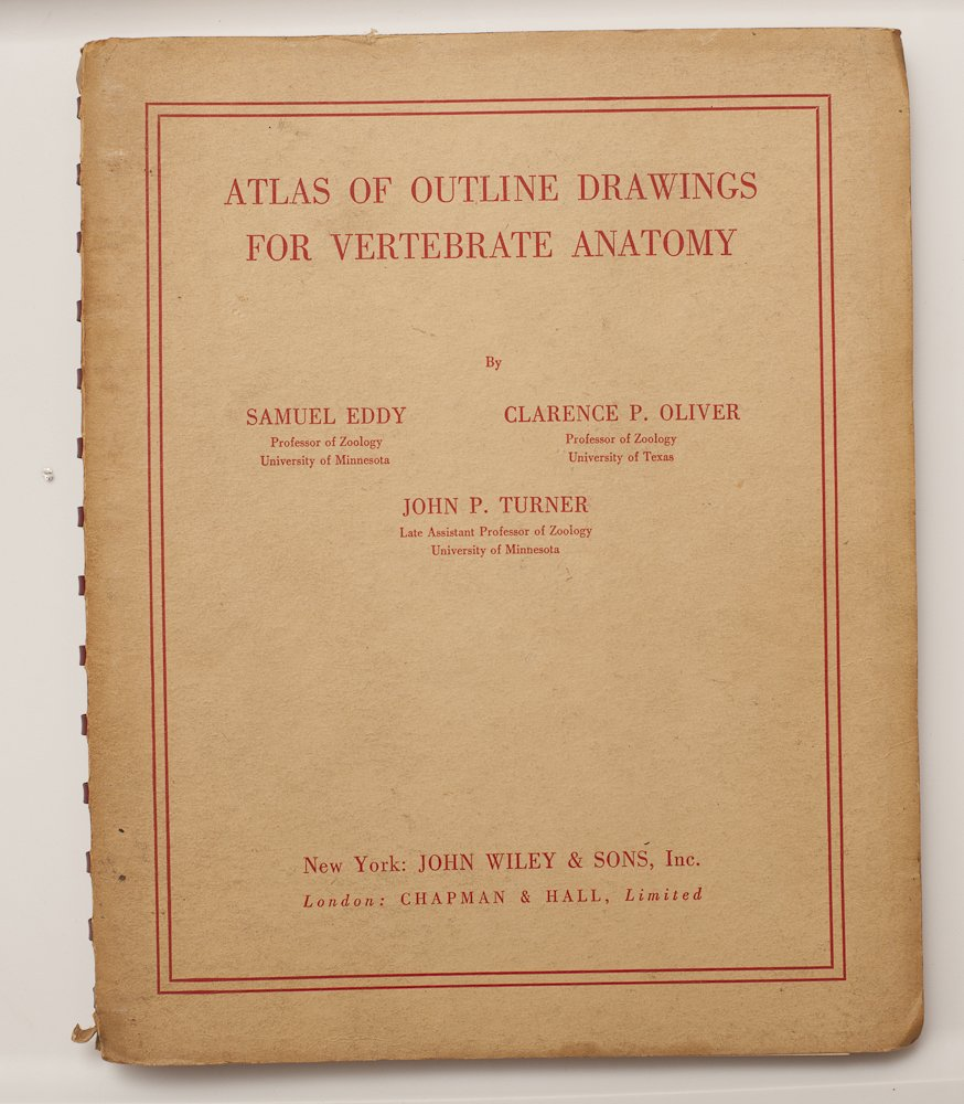Atlas Of Outline Drawings For Vertebrate Anatomy Samuel Oliver