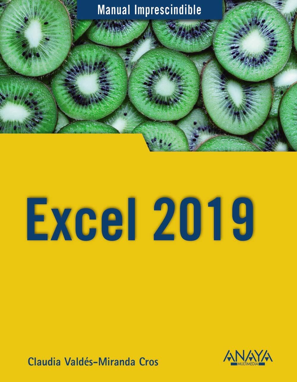 Excel 2019 (Manuales Imprescindibles)
