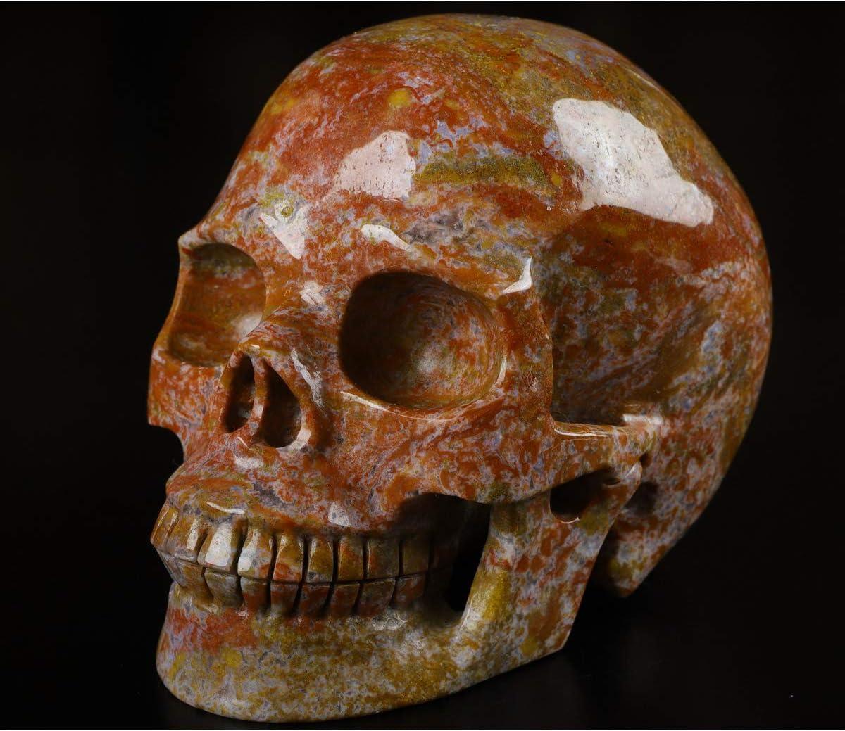 "Skullis 5.0"" Red Moss Agate Carved Hand Ranking In stock TOP7 Crystal Skull Gemstone"