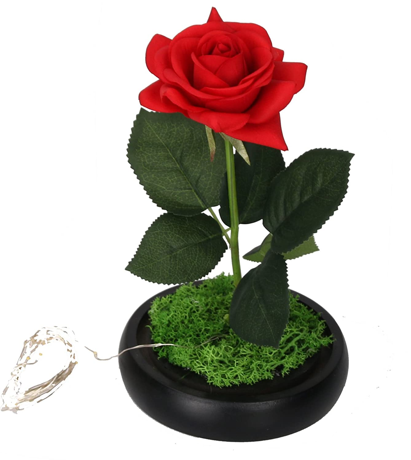CaoBin Red Silk Rose and LED Light that Lasts Forever in Glass Dome Inspired and the Wooden Black Base Covered with Real Artificial Rose Floral Flower Best Gift for Her on Mothers Day