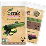 CERTIFIED NON-GMO SEEDS (Appr. 60) - Dark Green Zucchini Squash Seeds - Heirloom Seeds Squash Collection - Untreated, Non Hybrid Vegetable Seeds, USA Garden Seeds