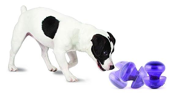 Amazon.com: Juguete para perro hongo mágico de Busy ...