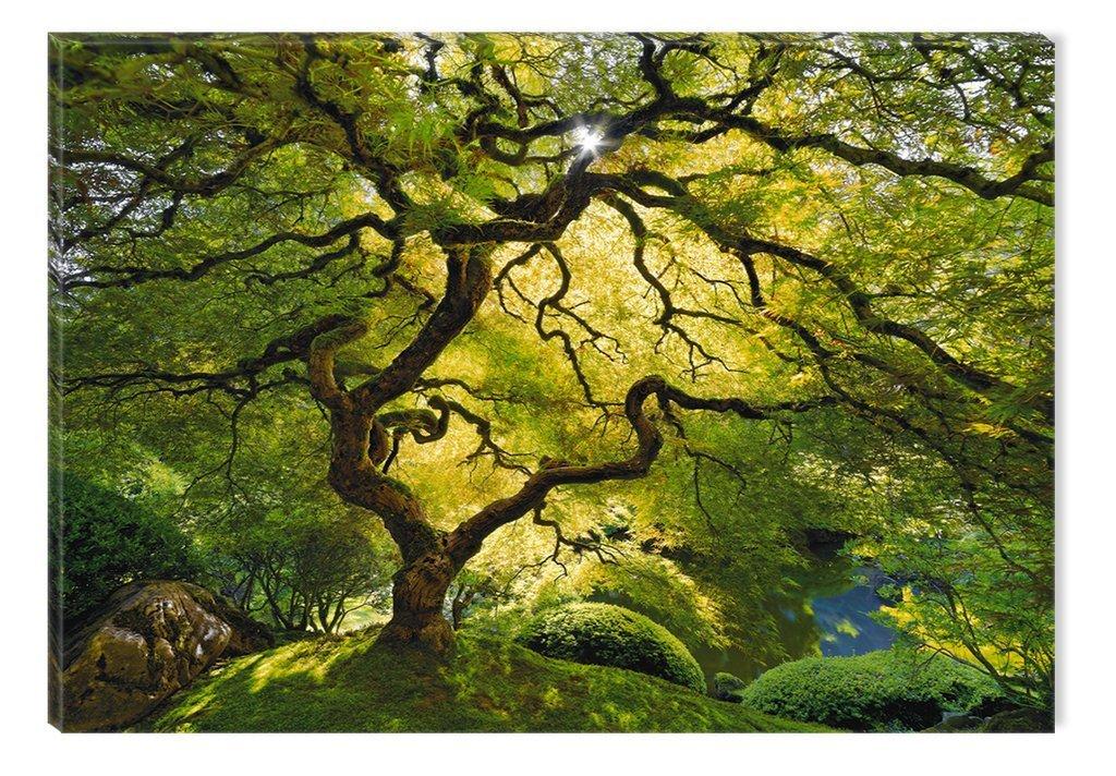 Startonight キャンバス製壁飾り用アート 樹々のある抽象的な風景 湖 自然 林 白黒 L DTB7433 B0151QYLVQ L|Green Maple Green Maple L