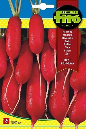 Semillas Fitó 266 - Semillas de Rabanito Dátil Rojo Gavá