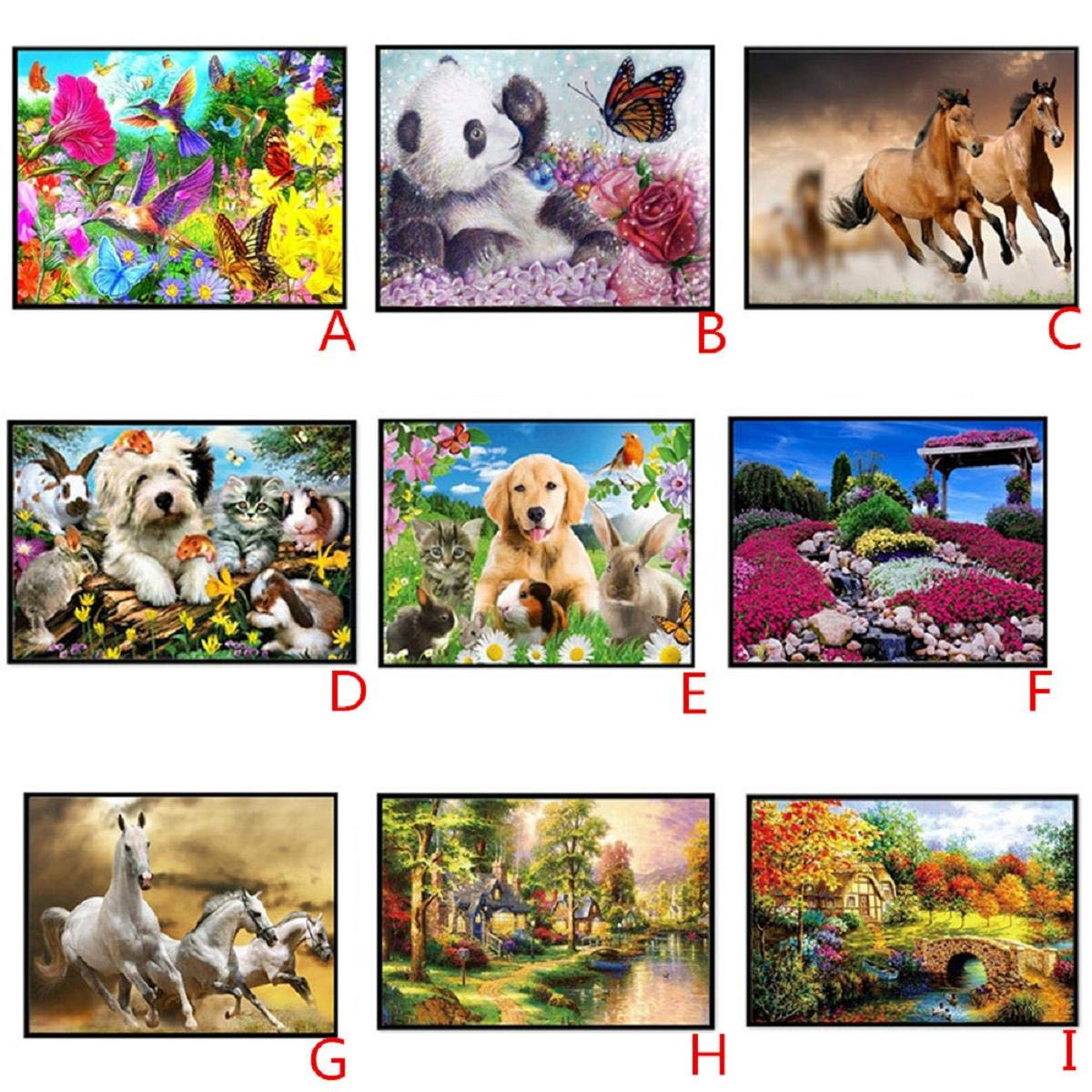 DIY 5D Diamond Painting Dartphew by Number Kits, Crystal Rhinestone Embroidery Pictures Arts Craft for Home Wall Decor - Lovely Dogs Cats Horses Animals - Reduces Eye Strain by Dartphew DIY 5D Diamond Painting (Image #3)