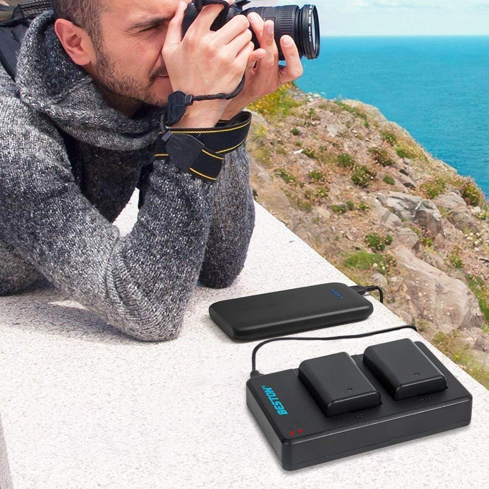 sumicorp.com BESTON NP-FW50 Akku Ladegert Set kompatibel mit Sony ...