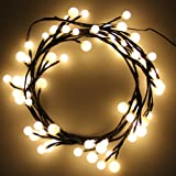 Ball String Lights, CroLED LED Rattan Globe String Lights Decorative Lights Twinkle Lights for Indoor/Outdoor, House DIY, Wedding, Party, 8 Modes Dimmable, IP65 Waterproof(Warm White)