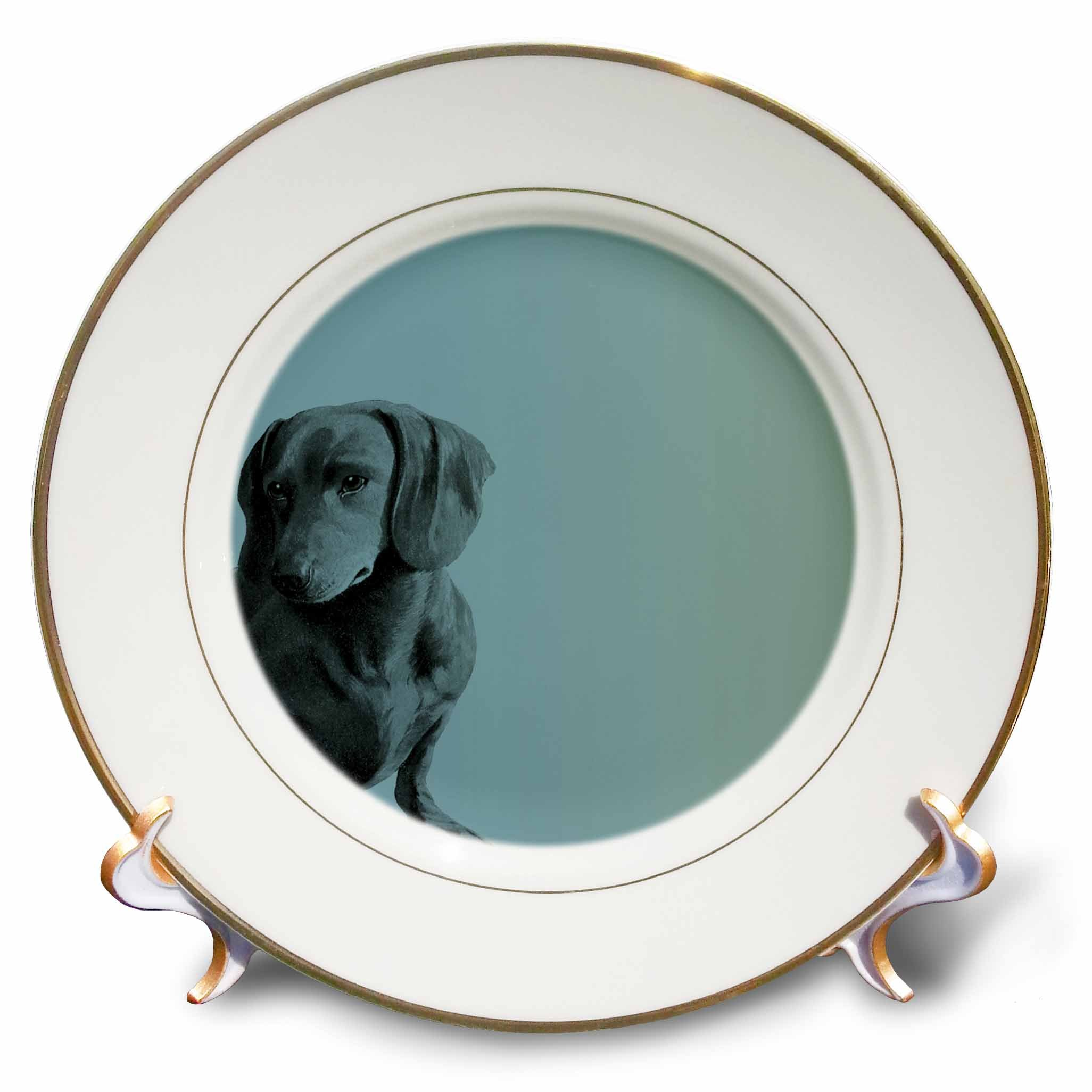3dRose cp_130560_1 Adorable Daschund Dog Pets Animals-Porcelain Plate, 8-Inch