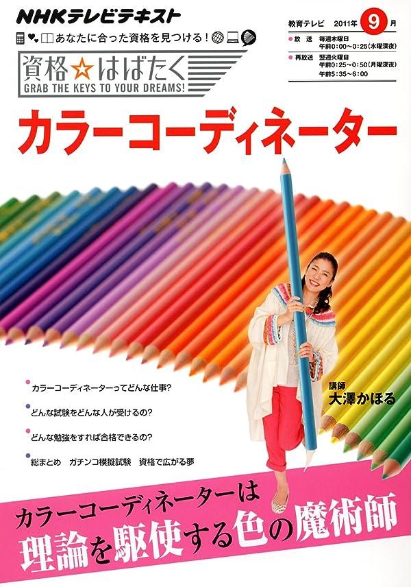 行列ダース記念日2007-2008年版 ひとりで学べるカラーコーディネーター3級試験