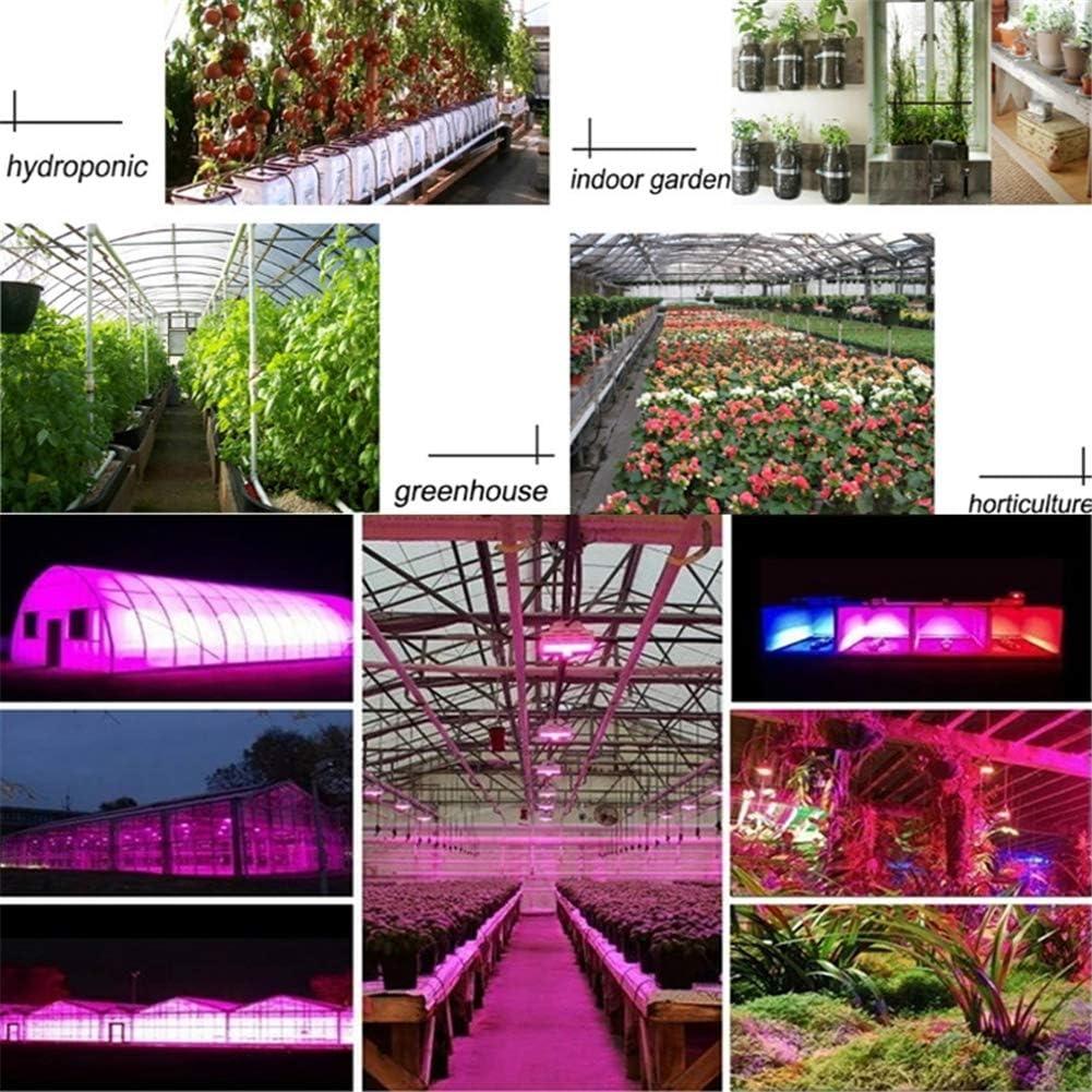 Lampe pour Plante LED et les puces doubles /él/èvent les luminaires Double lampe /à spectre complet avec interrupteur /à double interrupteur avec UV et IR pour la culture de plants de l/égumes,300W