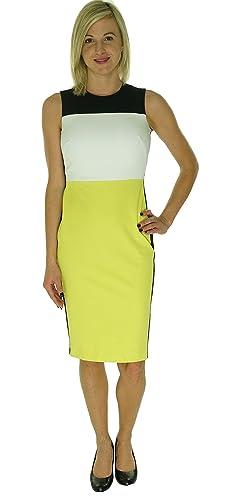 Calvin Klein Women's Sleeveless Color Block Sheath Dress