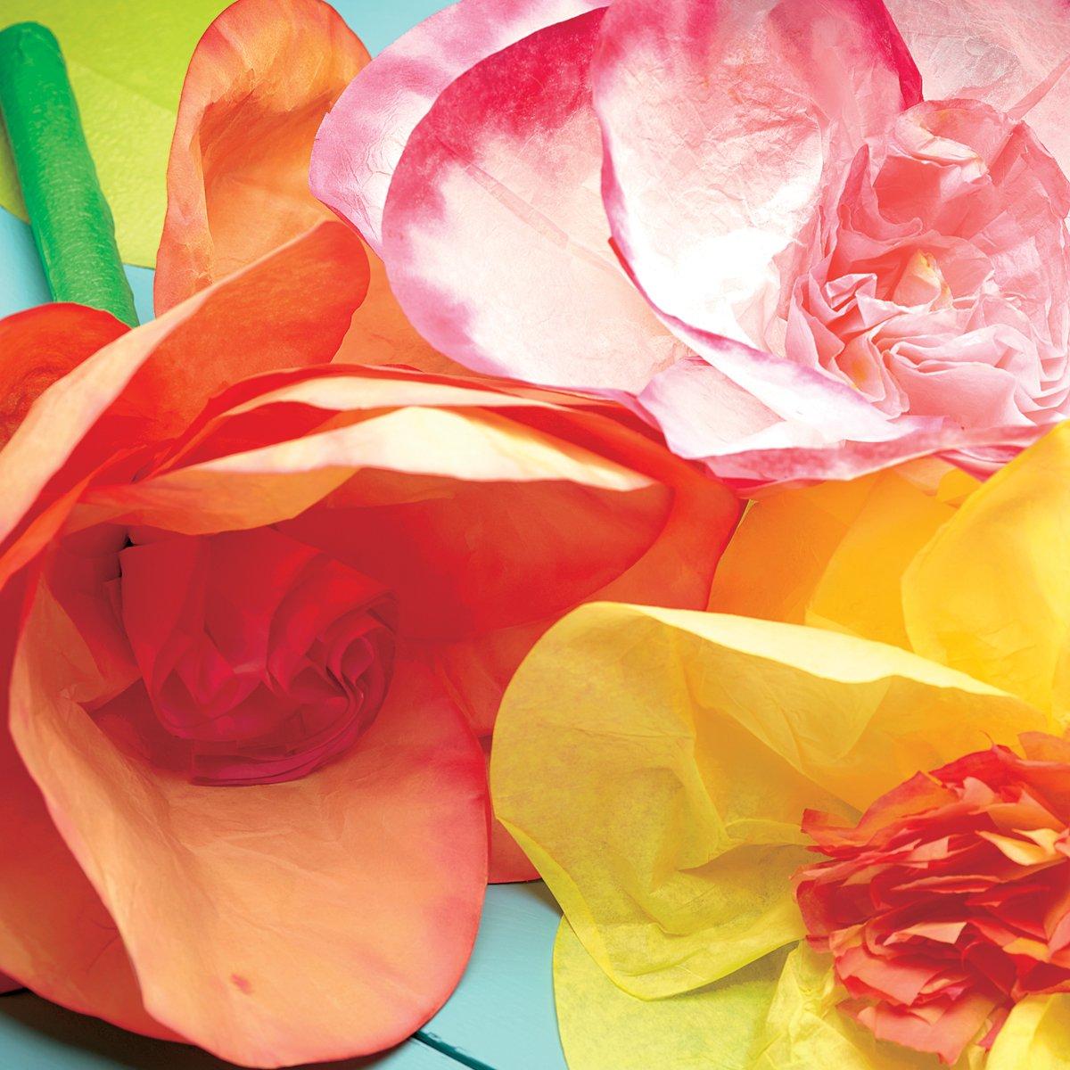 Amazon.com: CRAFTIVITY Posh Petals Craft Kit - Dye and Assemble 3 ...