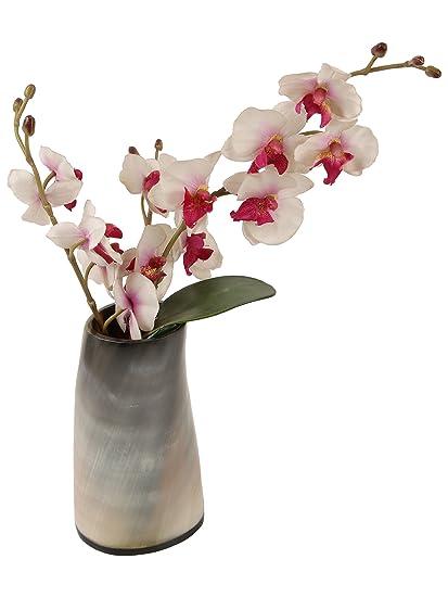 Amazon Com Natural Horn Vase Centerpiece Home Decoration Handmade