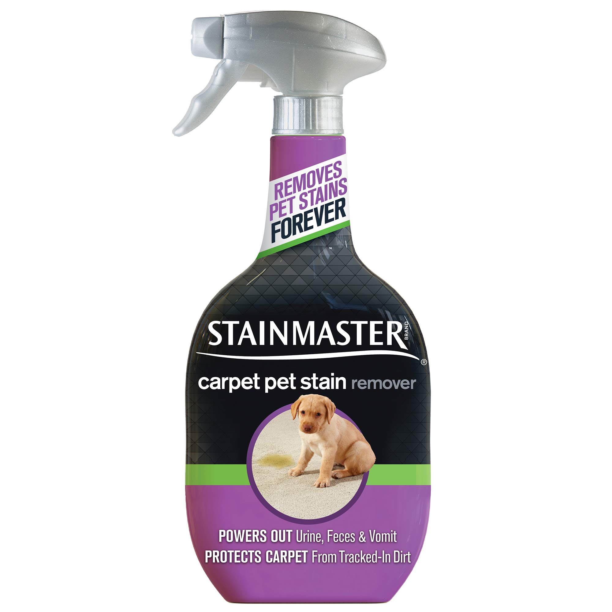 STAINMASTER Carpet Pet Stain & Odor Remover Cleaner, 22 Ounce by Stainmaster